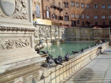 Finding Familiarity in Siena: Bonding over Homesickness While StudyingAbroad
