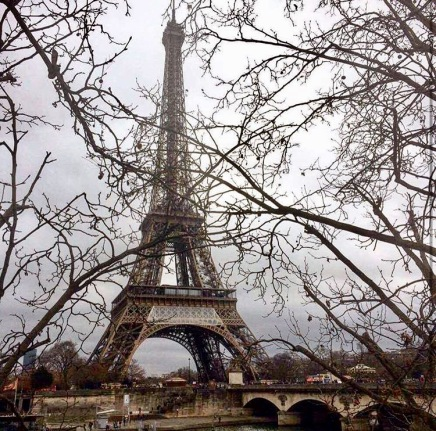 Broken Phone Leads to Greater Appreciation inParis